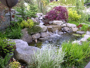 Residential Water Feature / Fountain